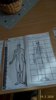 Fotogalerie Znám lidské tělo, foto č. 5